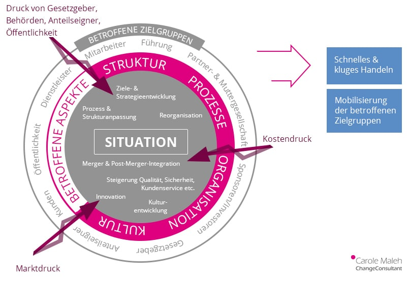 Komplexe Change Prozesse